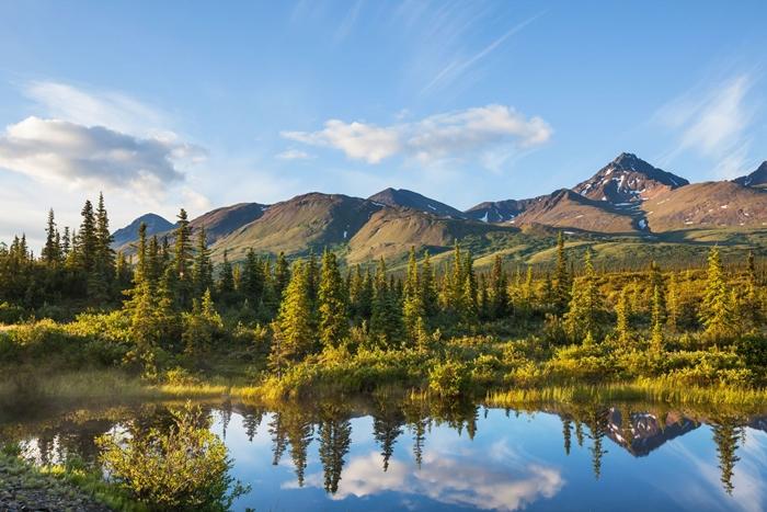 singles viajeros alaska maravillosa