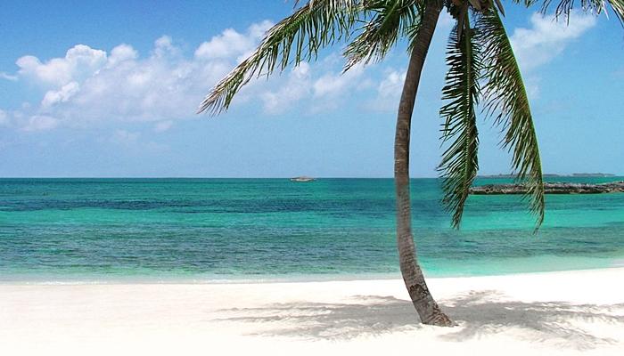singles viajes bahamas con niños