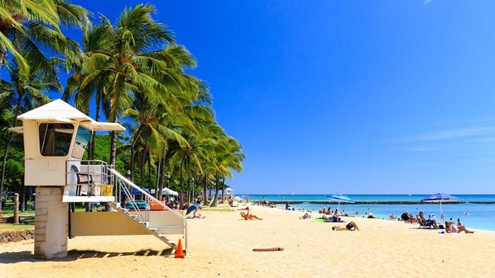 singles viajes descubriendo hawaii