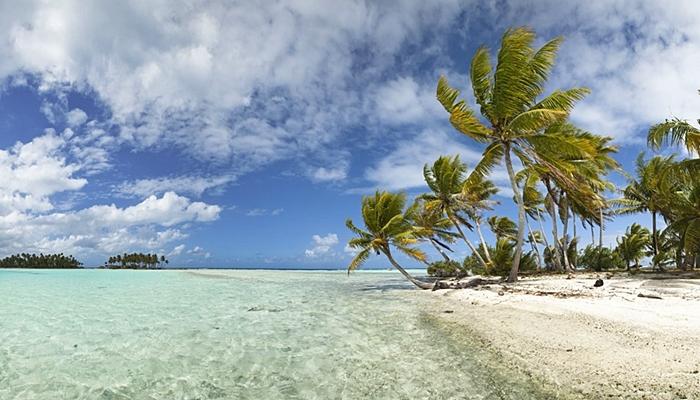 vacaciones para solteros bahamas con niños