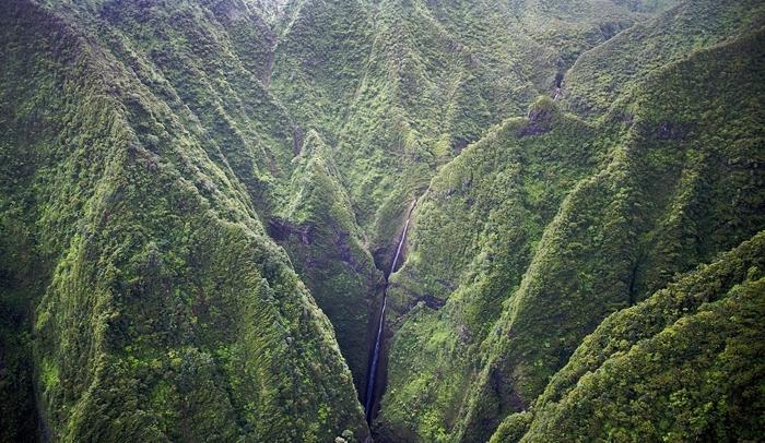 viajes de solteros descubriendo hawaii