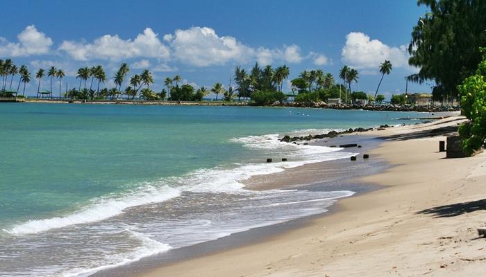 viajes de solteros miami puerto rico