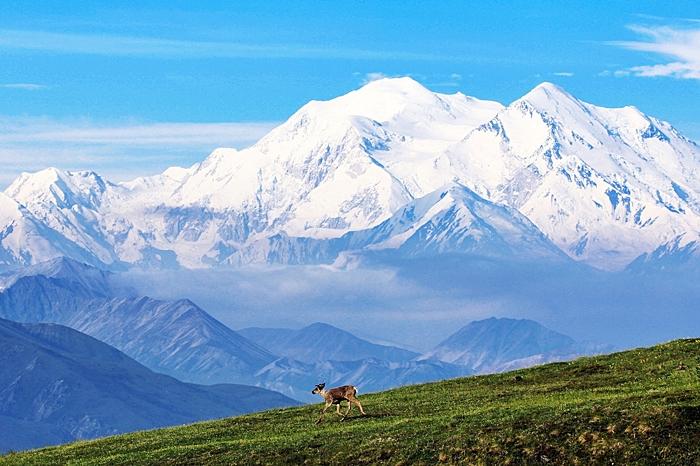 viajes solteros alaska maravillosa