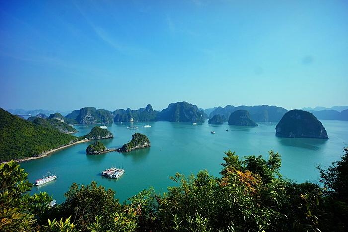 vietnam agosto single