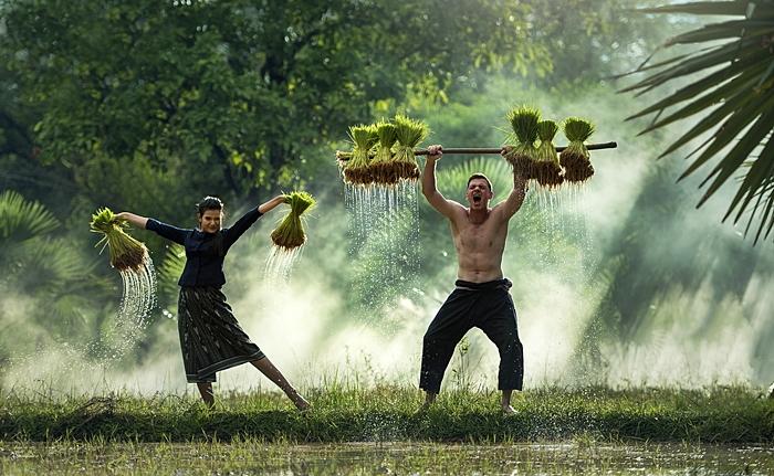 vietnam agosto viaje para single